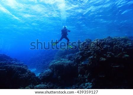 One diver underwater #439359127