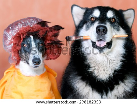 one dog holding the brush other dog wearing a wig and a hat