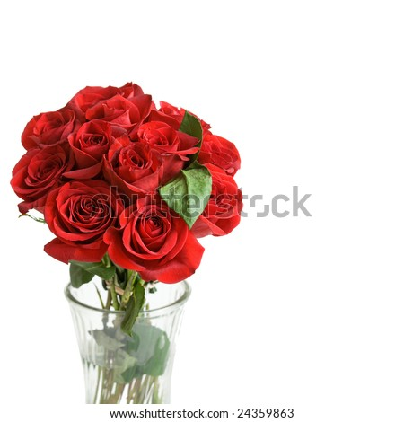 Dozen beautiful red roses in a vase, on a white background with