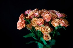 One Dozen Roses with black background