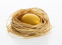 One golden egg in the nest on white background.
