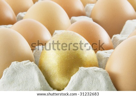 One golden egg with many ordinary fresh rural eggs