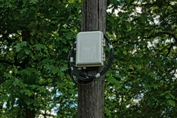one gray plastic box for the Internet with a black cable on a wooden pole on the street against a background of green tree branches