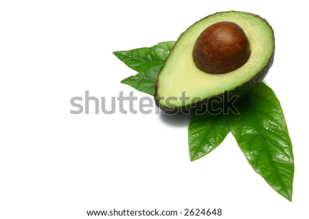One half Hass Avocado with young leaves from an  Avocado tree, isolated on white