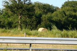 One hay roll in a mowed field. Behind the highway guardrail. Trees, meadow and sky in the background.