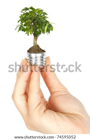 One lamp with plant inside in human hand on white background. Green energy concept