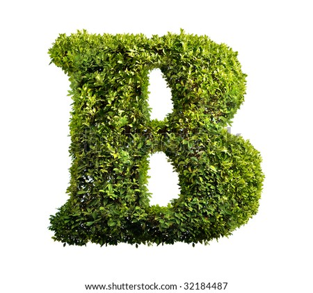 One letter of bush alphabet