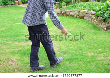 one man farmer is fertilizing the lawn soil. male hand of worker, Fertilizer For Lawns in springtime for the perfect lawn. lawn fertilizer in man's hand on garden background.