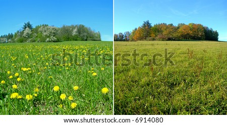 One meadow during the spring and fall seasons