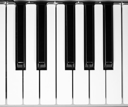 One Octave Piano Keyboard. Isolate.