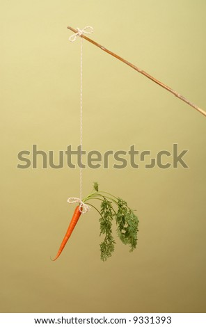"""One of management's favorite tools--the classic """"carrot on a stick"""" - stock photo"""