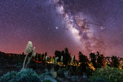 One of the best Milky Ways in the world in the Caldera de Taburiente near Roque de los Muchahos on the island of La Palma, Canary Islands. Spain, astrophotography