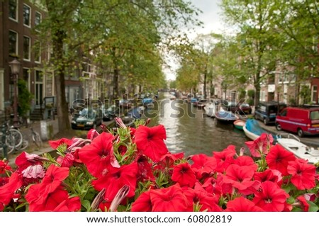 One of the channels in Amsterdam. Focus on the lovely red flowers.