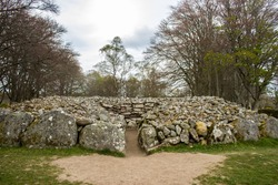 One of the Kerb Cairns of the Prehistoric Burial Cairns of Bulnuaran of Clava in Scotland, part of a large Burial complex, surrounded by large Beech trees