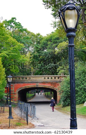 One of the many bridges in Central Park, New York City.