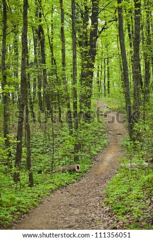 One of the many trails available for hiking and biking in Monte Sona State Park in Huntsville, AL
