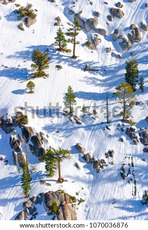 """One of the slopes at """"Squaw Valley"""", California, for those who like extreme skiing between rocks and trees. #1070036876"""