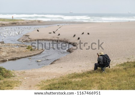 One person birdwatcher at Lluta river wetlands in front of the Pacific ocean with its waves in the far horizon crashing the beach an amazing bird watching wildlife reserve and landscape, Arica, Chile\n