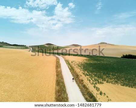 One person walking on a path in the Spanish countryside, doing the Santiago Walk or St. James Way to Santiago de Compostela.