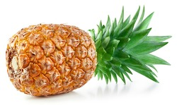 One pineapple isolated on white. Full depth of field. Pineapple clipping path.