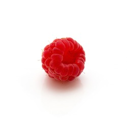 One red raspberry isolated on white background