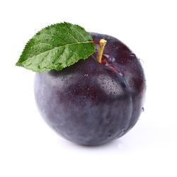 One ripe fresh plum with leaf