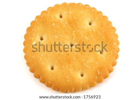one salty cracker flat on white