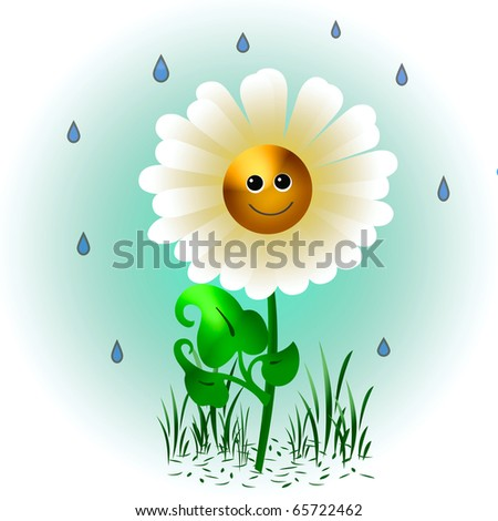 one smiling daisy in the rain illustration
