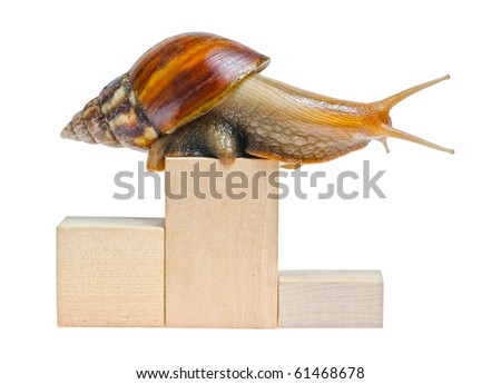 One snail on empty podium isolated on white