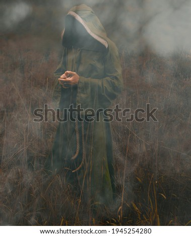 one unrecognizable witch   man wearing green shroud. male wizard standing in green field on dark trees background. morning fog around Imagine de stoc ©
