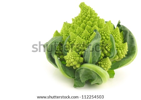 one whole Romanesco broccoli (Brassica oleracea) on a white background