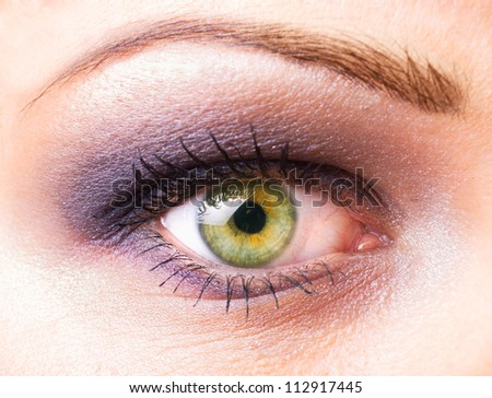 One women's  eye closeup with make up