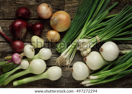Onion, shallot, red and spring onion variety