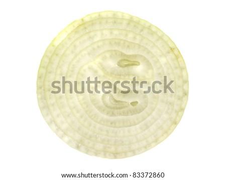 Onion Slice on white background