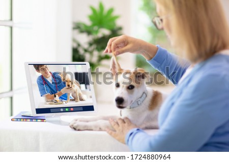 Online consultation with veterinarian. Vet examining animal via video chat. Dog check up during quarantine. Veterinary doctor checking pet in conference call. Remote medicine and emergency assistance. Photo stock ©
