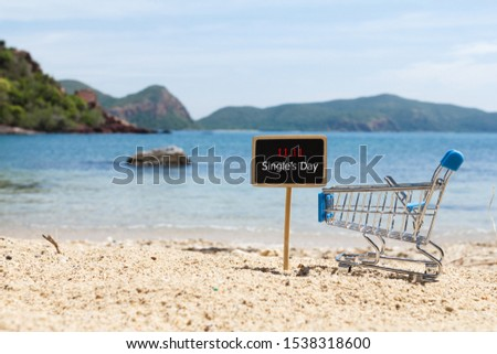 Online shopping of China, 11.11 single's day sale concept. The shopping cart and the text 11.11 single's day sale on the beach.