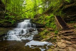 Onondaga Falls, at Ricketts Glen State Park, Pennsylvania.