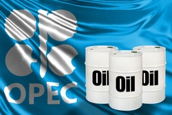 OPEC flag next to oil barrels. Inscription oil on white barrels. Concept - crude oil price controls. Organization of the Petroleum Exporting Countries. Negotiations on cost of petrolium. OPEC logo