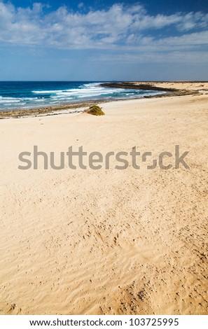 Open beach on a tropical island. Lanzarote. Canarian island. Vertical view