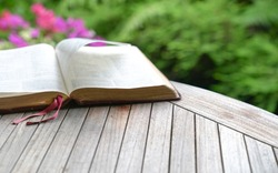 Open bible on wooden table. Soft blur effect with focus on book mark. Green nature at background.