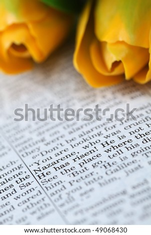 Open Bible with selective focus on the text in Mark 16:6 about Jesus\' resurrection: \