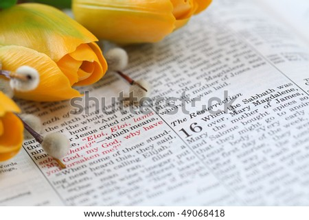 Open Bible with selective focus on the text in Mark 16 about Jesus\' resurrection. Shallow DOF