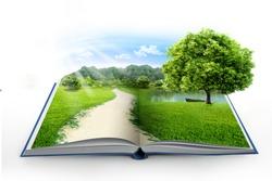 Open book in green grass over blue sky