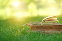 Open book in green grass. reading Hobbies, vacation concept. pleasure summer meadow and book. copy space