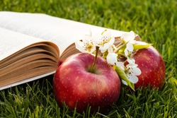 Open book on green grass with fresh red apples and a pear flower.