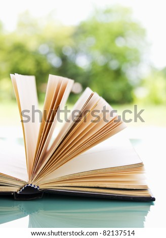 Open book over a light nature background - stock photo