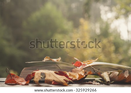 open book with colorful autumn leaves