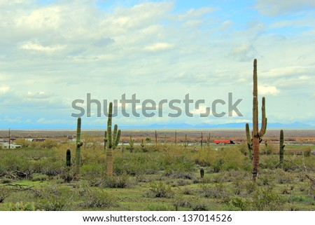 Open desert along Interstate-10 highway at Picacho, Arizona