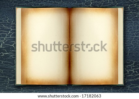 Open Dingy Grunge Book With Copyspace for Your Design or Text on Crackled Background