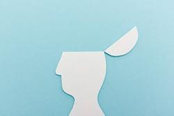 Open head illustration
